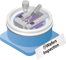 11Wafers Inspection